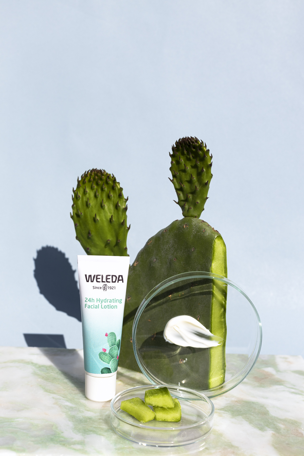 Weleda Cactus 24h Hydrating Facial Lotion , 30 ml